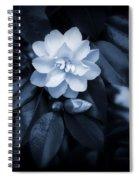 Moonlight Maiden Spiral Notebook