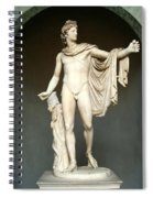 Apollo Belvedere Spiral Notebook