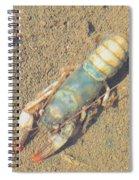 Appalachian Blue Crayfish Spiral Notebook