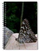 Appalachian Empress Spiral Notebook