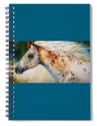 Appaloosa Spirit 3618 Spiral Notebook