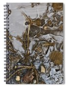 Apparitions On Ice Spiral Notebook