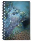 Appendage Spiral Notebook