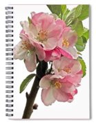 Apple Blossom Vertical Spiral Notebook