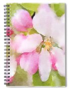 Apple Blossom Watercolour Spiral Notebook