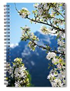 Apple Blossoms Frame The Rockies Spiral Notebook