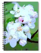 Apple Blossoms In The Spring - Painting Like Spiral Notebook