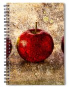 Apple Spiral Notebook