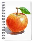 Red Apple Spiral Notebook