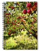 Apple Orchard Spiral Notebook