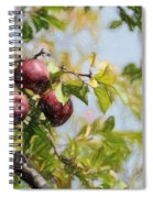Apple Pickin' Time Spiral Notebook