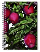 Apple Picking Time Spiral Notebook