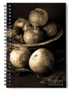 Apple Still Life Black And White Spiral Notebook