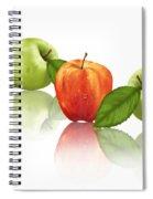 Apple Story Spiral Notebook