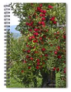 Apple Tree Spiral Notebook