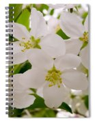 Apple Tree Blossoms Spiral Notebook