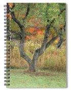 Apple Tree In Autumn Spiral Notebook