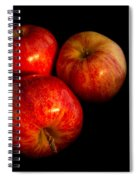 Apple Trio Spiral Notebook