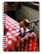 Apples And Apple Peeler Spiral Notebook