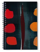 Apples And Oranges Spiral Notebook