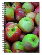 Apples Apples And More Apples Spiral Notebook