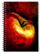 Apples  Spiral Notebook