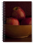 Apples In Bowl Still Life Spiral Notebook