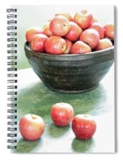Apples On The Table  Spiral Notebook