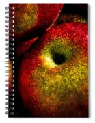 Apples Two Spiral Notebook