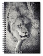 Approaching Lion Spiral Notebook