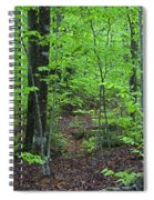 Approaching Sullivan Spiral Notebook