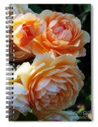 Apricot Dahlias Spiral Notebook
