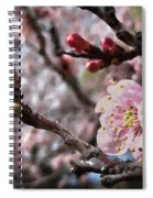 Apricot Floral Spiral Notebook