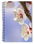 Apricot Flowers Spiral Notebook