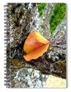 Apricot Leaf And Lichen Spiral Notebook