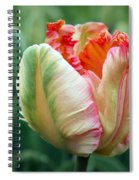 Apricot Parrot Tulip Spiral Notebook