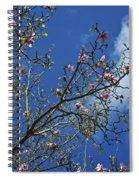 April Blossom Spiral Notebook