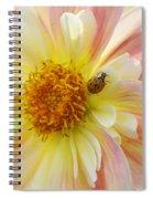 April Heather Dahlia With Ladybug Spiral Notebook