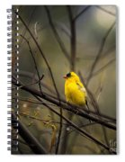 April Showers In Square Format Spiral Notebook