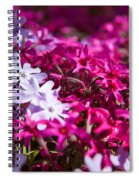 April Showers Mean May Flowers Spiral Notebook
