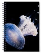 Aquarium Berlin Spiral Notebook