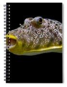 Aquarium Fish Spiral Notebook