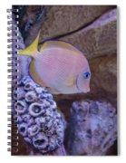 Aquarium Impression Spiral Notebook
