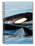 Aquatic Immersion Spiral Notebook