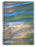 Aquatic Motion Spiral Notebook