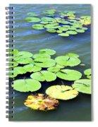 Aquatic Plants Spiral Notebook