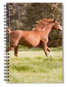 Arabian Horse Running Free Spiral Notebook