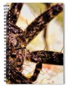 Arachnophobia Spiral Notebook