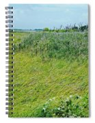 Aransas Nwr Coastal Grasses Spiral Notebook