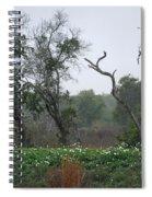 Aransas Nwr Landscape Spiral Notebook